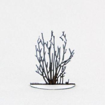 Petit arbuste, églantier (hiver) (h. 6 cm)