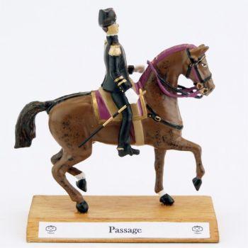 Grand cavalier du Cadre Noir : Passage
