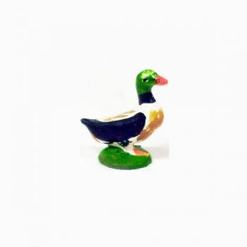 Canard multicolore